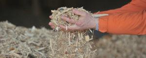 """8 Biomasseverbände unterzeichnen """"Grazer Deklaration"""""""