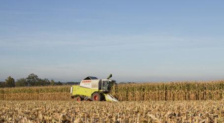 Stimmungslage bei deutschen Bauern bessert sich etwas