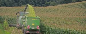 DLG: 10 Thesen zur Landwirtschaft 2030