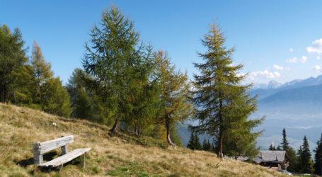 Köstinger fordert Vereinfachung bei Almflächenvermessung