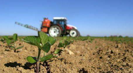 Weiter Streit um Pflanzenschutz-Verbot auf Greening-Flächen
