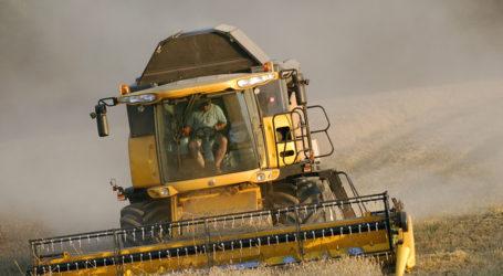 Getreideernte 2016 war mengenmäßig hervorragend
