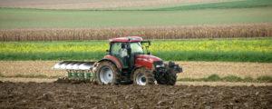 Biologische Landwirtschaft weltweit im Aufschwung