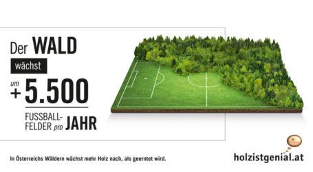 Neue Info-Kampagne von proHolz Austria