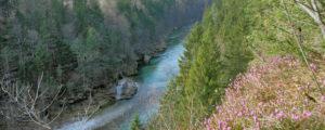 EU-Kommission lobt österreichische Umweltpolitik