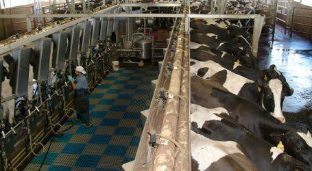 USA: Was ist Milch?