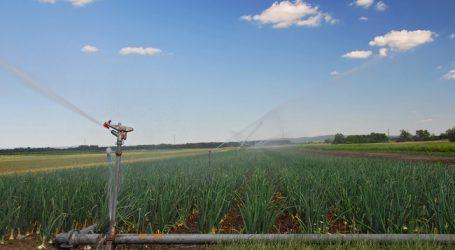 Vorschriften für Erzeugerorganisationen bei Obst und Gemüse gelockert