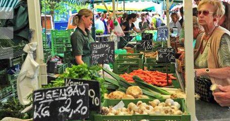 Greenpeace fordert Wende in der Agrarpolitik