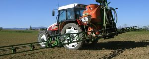 Pflanzenschutz-Verbot auf Greeningflächen rückt näher