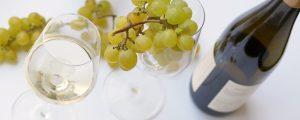 Weinexport boomte 2016