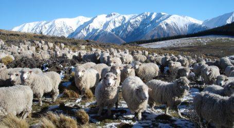 EU strebt Handelsabkommen mit Neuseeland an