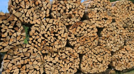 Zwei Millionen Haushalte heizen mit Holz