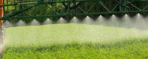 Kaum Pflanzenschutz-Rückstände in eupopäischen Produkten