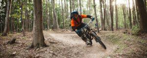 Bundesforste mit 40 neuen Mountainbike-Trails