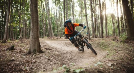 Bundesforste mit 40 neuen Mountainbike-Trails