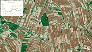 Hagelversicherung: Kunden erhalten Satellitenbilder