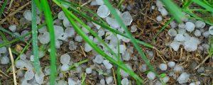 Hagelunwetter in Kärnten schädigt 2.500 Hektar
