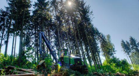 Schadholzanteil ging 2016 stark zurück