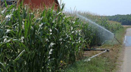 Machbarkeitsstudie bei Bewässerung soll Möglichkeiten aufzeigen
