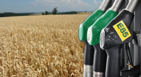 Bioethanol in Deutschland konstant