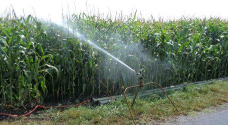 Dürre: Schultes will Donau anzapfen