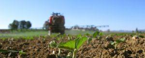 Bauernverbände gegen Greening-Pflanzenschutzverbot