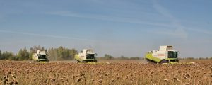 Russland steigert Agrarexporte