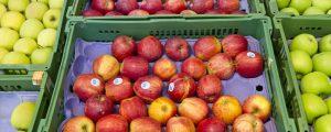 Apfellager auf Rekordtiefststand
