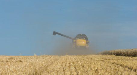Trockenheit ließ Getreideerträge dahinschmelzen