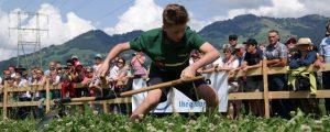 Österreich holt vier EM-Goldmedaillen im Handmähen