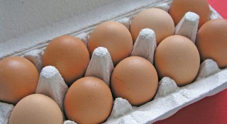 Acht Fälle von Fipronil-Eiern in Österreich