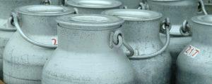 Berglandmilch erhöht Milchpreis ab September
