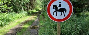 Reiter sollen sich an Wege halten
