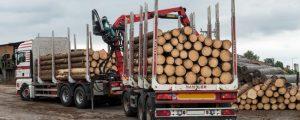 4 Mrd. Euro Außenhandelsüberschuss mit Holz