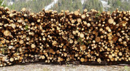 Holz kann nicht mehr abtransportiert werden