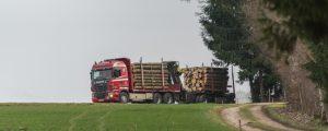 Mehr Gewicht bei Schadholztransporten gefordert