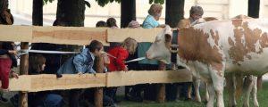 Bäuerinnen besuchen Volksschulen