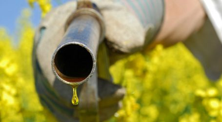 Biokraftstoffe: Anrechnungs-Aus gefordert