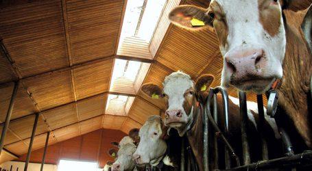DBV: Höhere Milchpreise müssen schneller ankommen