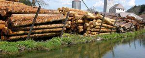 Erneut Clinch zwischen Sägeindustrie und Forstwirten