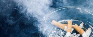 Koalitions-Kuhhandel: Bauernanliegen gehen in Rauch auf