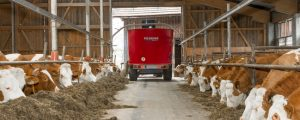 EU-Experten glauben an positive Milch-Entwicklung