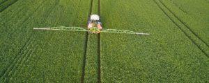 Bayer veröffentlicht Pflanzenschutz-Studien