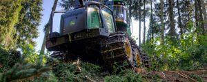 Schadholzabtransport in Unterkärnten stockt