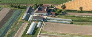 Bauerneinkommen erholten sich 2017