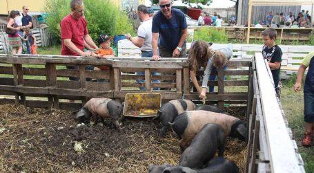 """Jungbauern suchen Teilnehmer für """"Open Bauernhof"""""""