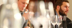 Neue Spitzenausbildung für Weinexperten
