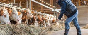 Landwirtschafts-Rechtsschutz der D.A.S. für Betrieb und Familie