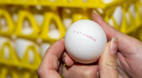"""Schultes: Undeklarierte Eier sind """"Verbrauchertäuschung"""""""
