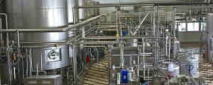 Milchexporte im Vorjahr deutlich gesteigert